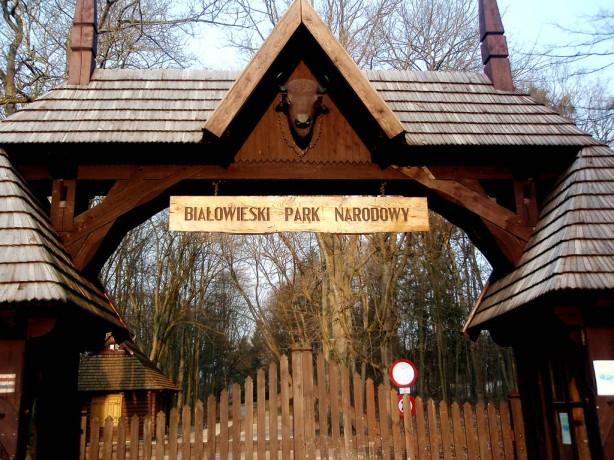 El parque de Bialowieza  (Polonia)