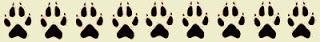 huellas-lobo-amigo-lobo-carlos-sanz